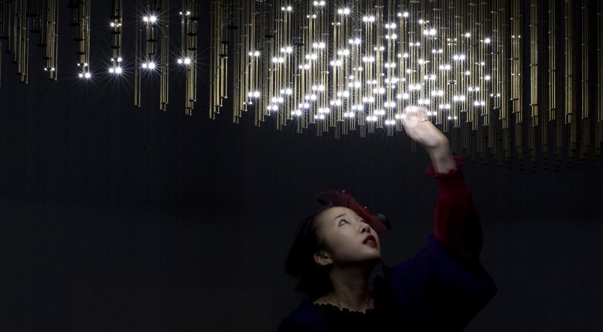 Swarm Light, 2010
